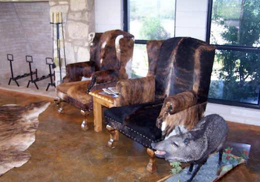 Guest Chairs and Fireplace